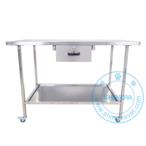 Veterinary Stainless Steel Examination Table (MT-1200) pictures & photos