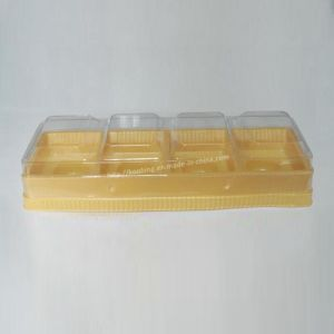Transparent Plastic Packaging Box and Tray pictures & photos