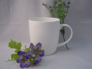 Bone China Mug with Printing (FV-FDLX0013)