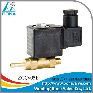 Steam Iron Electronic Valve (ZCQ-05B) pictures & photos