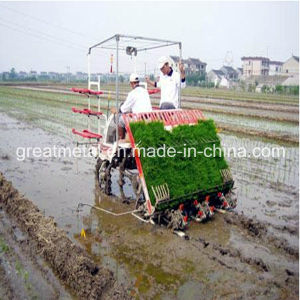 The New Rice Transplanter (2ZT-8238BG)