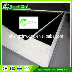All Kind of Quality Film for Construction From Linqing Chengxin Wood