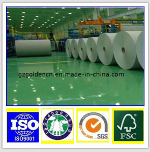 60GSM 70GSM 80GSM Woodfree Offset Printing Paper pictures & photos