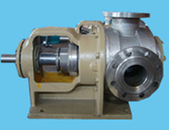 Nyp30 Stainless Steel Rotor Pump