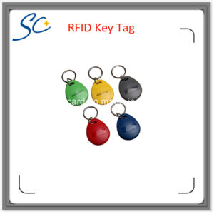 Cheap ABS Lf 125kHz/Hf 13.56MHz RFID Key Tag with Multi Color