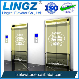 Passenger Home Elevator with Mirror Etched Stainless Steel pictures & photos