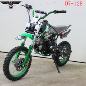 D7-12e 110cc Electric and Kick Start Dirt Bike