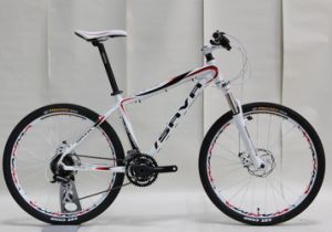 High Grade Alloy Frame Mountain Bike (FP-MTB-A002) pictures & photos