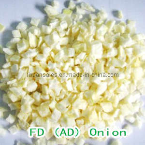Frozen Dehydrated Onion Dices