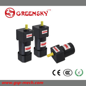 90W AC 220V Electric Induction AC Gear Motor, DC Gear Motor, Motor with Gearhead