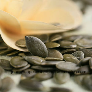New Crop Gws Pumpkin Seeds From China pictures & photos