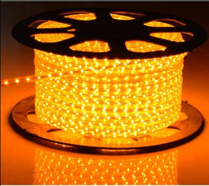 Holiday Lighting 220V SMD3528 60LEDs/M Single Color LED Strip Light pictures & photos