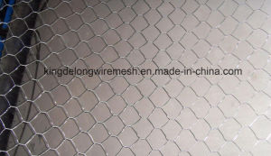 Galvanized Hexagonal Wire Netting From Kdl pictures & photos