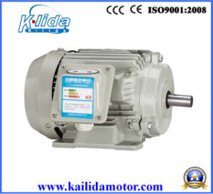 Yx3 Series Three Phase High Efficiency Electric Motors pictures & photos