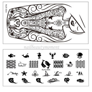 Wholesale Nail Art Stamping Plates Manicure Decoration Tool (SNA21)