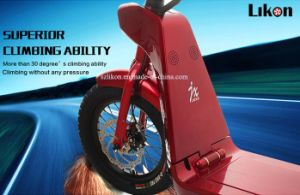 2016 Hot Sales Jiexg Mini E-Scooter with Replaceable Battery, 500W 48V, 18.8ah Big Capacity Long Distance up to 55km, Good Quality of Electric Scooter.