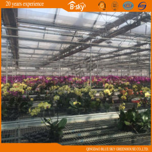 Auto environment Control Glass Greenhouse pictures & photos