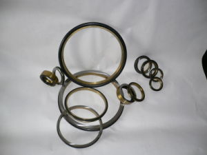 Oil Seal pictures & photos