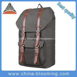 Big Capacity Fashion Polyester School Backpack Outdoor Travel Bag pictures & photos