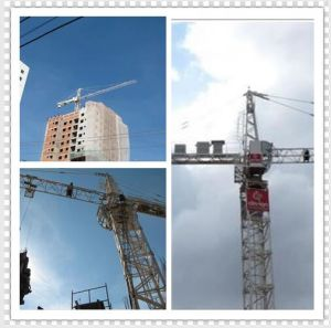 Inner Climbing Tower Crane Qtz63 (TC5013) pictures & photos