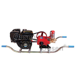 Garden Machinery Power Sprayer (OS-S22-G)