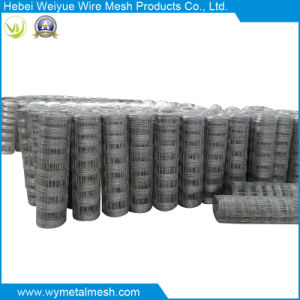 Galvanized Field Fence for Animal pictures & photos