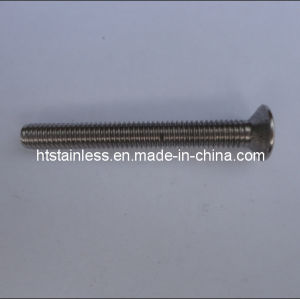 1.4462 / 2205 Hexagon Socket Countersunk Head Cap Screw pictures & photos