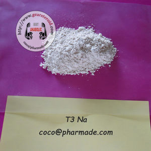 Online Buy Fat Burner Liothyronine Sodium T3 Na pictures & photos