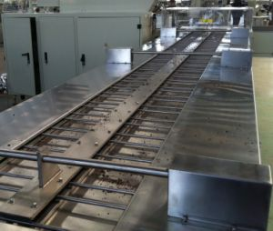 Sgn Double Conveyor Packing Machine pictures & photos