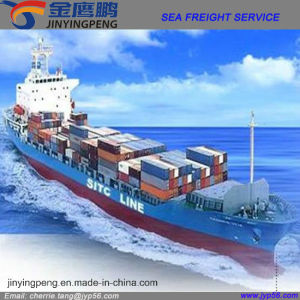 Sea Shipping Service for Dubai
