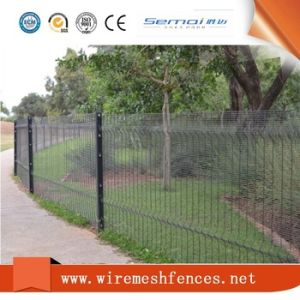 Anti Climb 358 Security Fence with Direct Price pictures & photos
