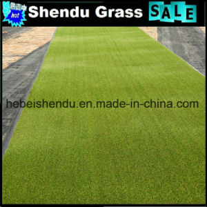 16800tuft Density Garden Green Grass with Plastic Material pictures & photos