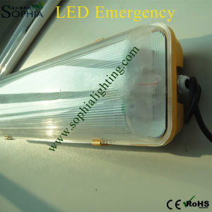 IP65 4ft Twin Tubes LED Emergency Light