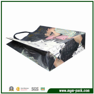 High Quality Popular OEM Paper Shopping Bag pictures & photos