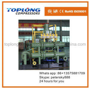 Top Quality Spain Technology Nitrous Oxide Methane CO2 Compressor pictures & photos