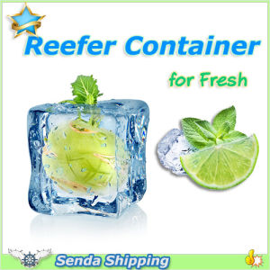 Frozen Products Insulated Container