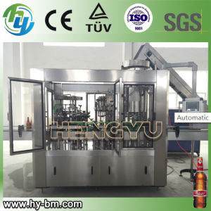 SGS Automatic Beer Bottle Packing Line pictures & photos
