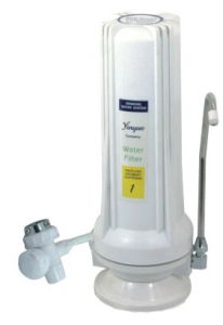 Single Water Filter (RY-CT-W4) pictures & photos
