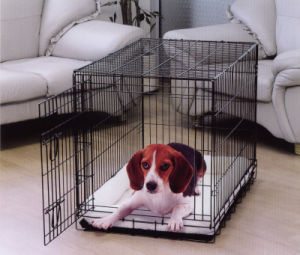 Dog Cage with One Door (DG-36)