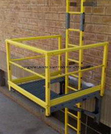 GRP/FRP/Fiberglass Ladders, FRP Caged/Handrail with Chemical Resistance