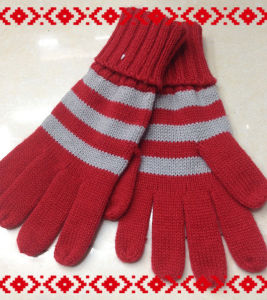 Warm Fashion Knitted Gloves - Wf016
