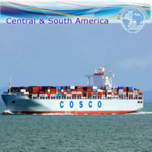 Sea Transportation Service, Container Shipping Freight Agent From China to Worldwide (FCL 20′′40′′) pictures & photos