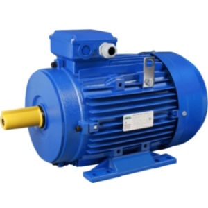 IE2 High Efficiency Cast Iron Housing Three-Phase AC Electric Motor