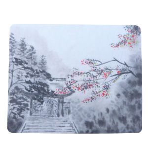for Your Selection Microfiber Lens Cleaning Cloth with Heat Transfer Printing