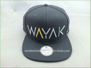China Custom Wool Snapback Cap with 3D Embroidery Logo Deisgn ... 0709c98cbd6