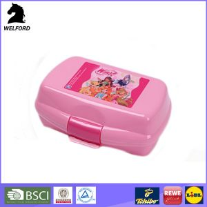 Plastic Lunch Box with 2 Compartment