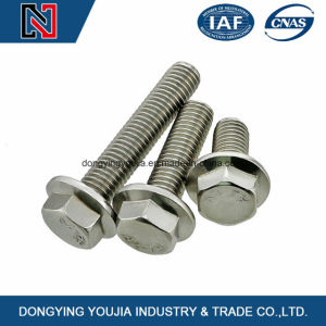 DIN6921 Hexagon Flange Bolts pictures & photos