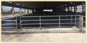 Galvanized Round Rail Livestock Fence Corral Temporary Fencing pictures & photos