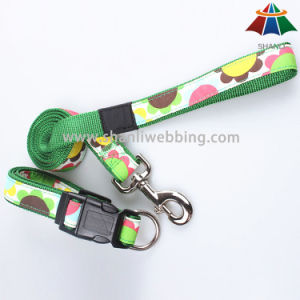 Hot-Sale High-Quality Printed 20mm Lovely Style Polyester/Nylon Leash & Adjustable Collar pictures & photos