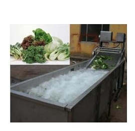 Vegetable and Fruit Bubble Cleaning Machine